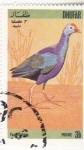 Stamps Oman -  AVE- PAVO