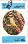 Stamps : Asia : Oman :  AVE- kookaburra