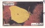 Stamps Nagaland -  mariposa