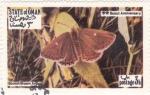 Stamps : Asia : Oman :  mariposa