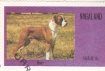Stamps of the world : Nagaland :  Perro de raza- boxer