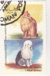 Stamps : Asia : Oman :  perro y gato de raza-