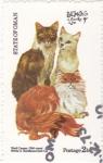 Stamps : Asia : Oman :  gatos de raza-