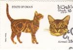 Sellos del Mundo : Asia : Omán : gatos de raza-