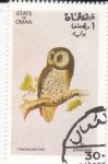 Stamps : Asia : Oman :  AVE- lechuza