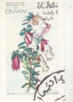 Stamps : Asia : Oman :  FLORES-