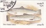 Stamps : Asia : Oman :  PECES- salmón