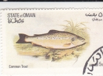 Stamps : Asia : Oman :  PECES- trucha común