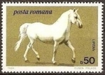 Stamps Romania -  Caballos