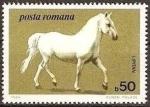 Sellos de Europa - Rumania -  Caballos