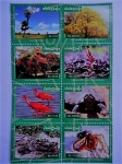 Sellos del Mundo : America : Venezuela : protección de la Biodiversidad Venezolana.