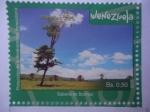 Stamps : America : Venezuela :  Protección de la Biodiversidad Venezolana - Sabana de Barina.