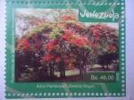 Stamps : America : Venezuela :  Protección de la Biodiversidad Venezolana - Árbol Flanboyant (Delonix Regia)