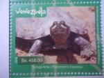 Stamps Venezuela -  Protección de la Biodiversidad Venezolana - Tortuga Arrau (Podocnemis Expansa)