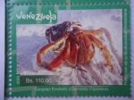 Stamps Venezuela -  Protección de la Biodiversidad Venezolana - Cangrejo Ermitaño (Coenobita Clypeatus)