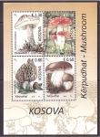 Stamps Europe - Kosovo -  setas