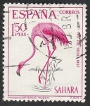 de Africa - Marruecos -  sahara español - 263 - Flamenco rosado