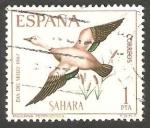 de Africa - Marruecos -  sahara español - 262 - Tarro