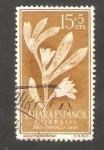 Sellos de Africa - Marruecos -  sahara español - 127 - Sesuvium portulacastrum