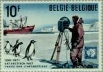 de Europa - Bélgica -  Pingüino de Adelia (Pygoscelis adeliae), Barco, Fotógrafo