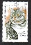 Stamps : Asia : Afghanistan :  Gatos Domésticos