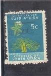 Stamps : Africa : South_Africa :  FLOR DE BAOBAB