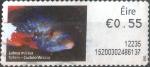 Sellos de Europa - Irlanda -  ATM#25 intercambio, 0,20 usd, 55 c. 2011