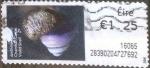 Sellos de Europa - Irlanda -  ATM#54 intercambio, 0,20 usd, 125 c. 2014