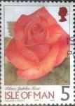 Stamps Isle of Man -  Scott#796 mxb intercambio, 0,20 usd, 5 p. 1999