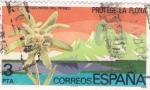 Stamps Spain -  PROTEGE LA FLORA (31)