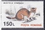 de Europa - Rumania -  MUSTELA ERMINEA