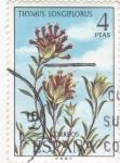 Stamps Spain -  THYMUS LONGIFLORUS (32)