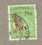 Stamps South Africa -  Mazorca maíz