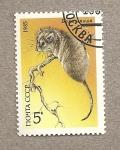 Stamps Russia -  Animales en peligro de extinción