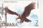 Stamps Spain -  AGUILA IMPERIAL (33)