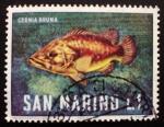 Sellos de Europa - San Marino -  animales marinos