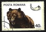 Sellos del Mundo : Europa : Rumania :  Brown Bear (Ursus arctos)