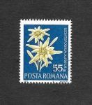 Sellos del Mundo : Europa : Rumania : 2333 - Flores Protegidas