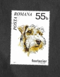 Stamps : Europe : Romania :  2229 - Foxterier