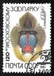 Sellos de Europa - Rusia -   Moscow Zoo, 120th Anniversary