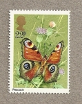 Stamps United Kingdom -  Mariposa