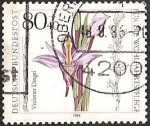 Stamps Europe - Germany -  Limodorum abortivum (GRF)