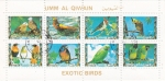 Stamps United Arab Emirates -  AVES EXOTICAS