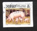 Stamps : Europe : United_Kingdom :  Animales de Granja