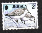 Stamps Jersey -  Pájaros