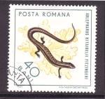 Stamps Romania -  serie. reptiles