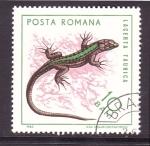 Sellos de Europa - Rumania -  serie- Reptiles