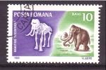 Stamps Romania -  serie- Fosiles