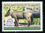 Stamps Africa - Mauritania -  phacochère