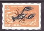 Stamps Romania -  serie- moluscos y crustaceos